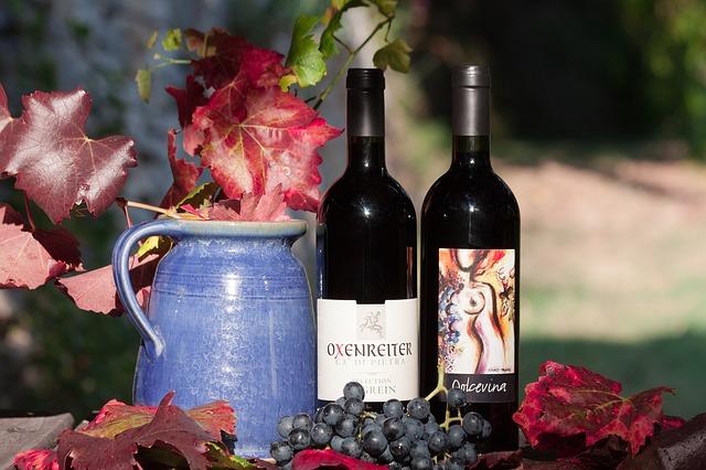 podzimní sklenice vína